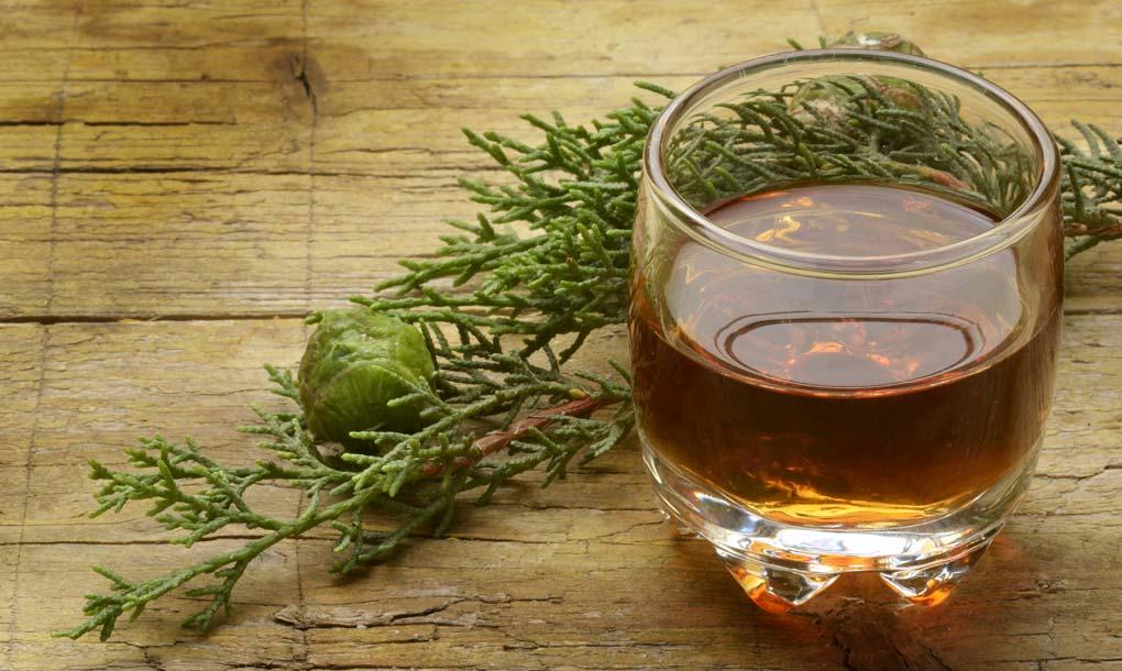 erbe aromatiche usate per produrre il liquore amaro calabro liquori